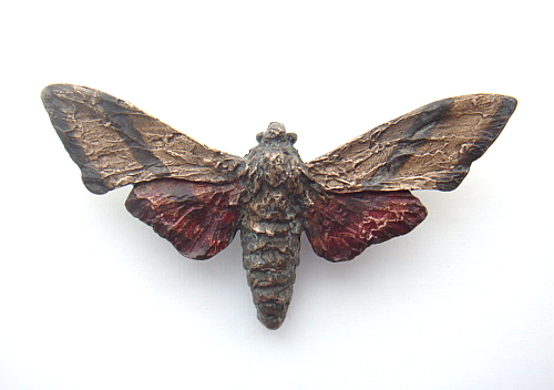 Sphinx-Moth